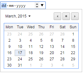 HTML5 date input example3